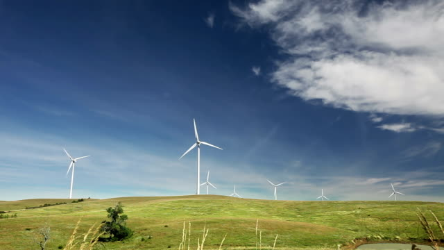 Wide angle view of a windmill farm video