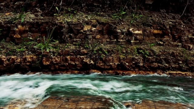 Wide shot of a yellow bird hopping along the top of a rock dam with a pool and waterfall video