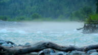 Wide water stream gushing  through the woods, turbulent water video