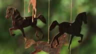 wild horses video