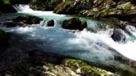 Wild Radovna river flows in Vintgar Gorge. Clean blue water and green forest. Triglav National Park, Julian Alps, Slovenia. video