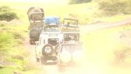 Wildlife viewing in Africa on Ngorongoro Safari Tour video