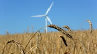 Wind Energy - close up video