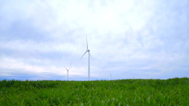 Wind farm in green field. WInd turbines farm. Wind technology video