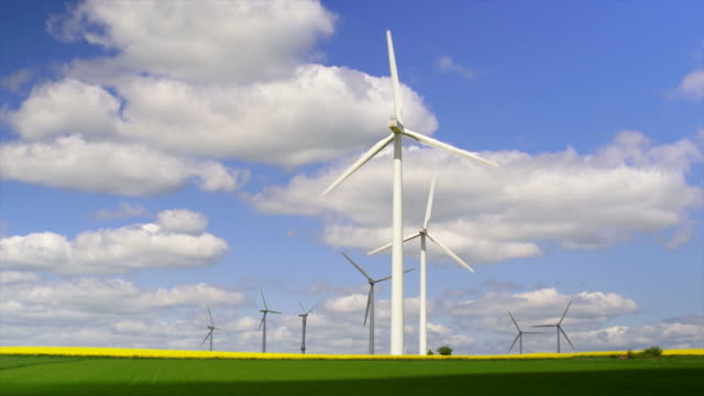 Wind Farm In Spring video