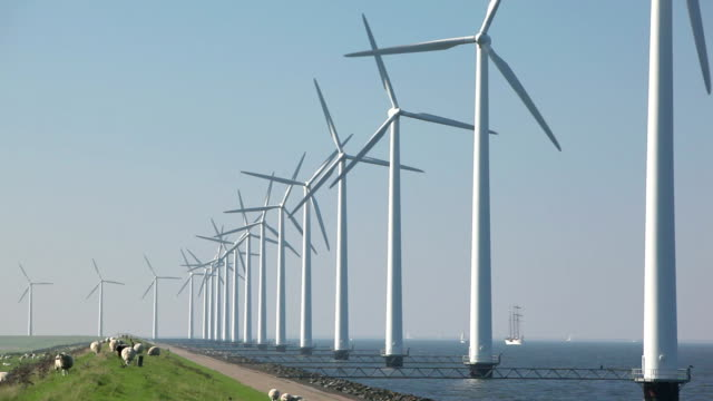 Wind farm in the Netherlands video