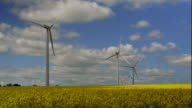 HD Wind Farm on Canola Field video