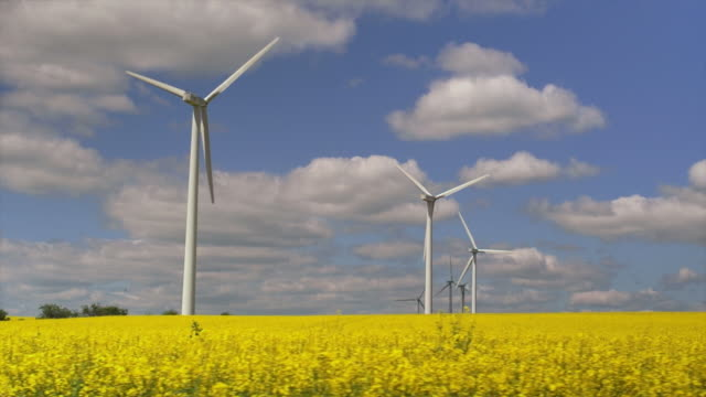 Wind Farm Shot From Drivers Point Of View video