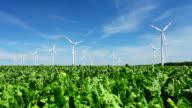 HD Wind Farm video