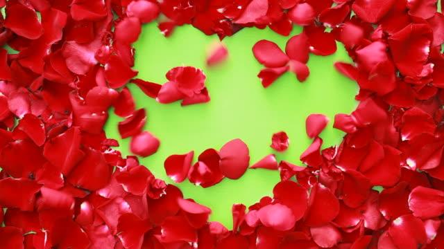 Wind of Love video