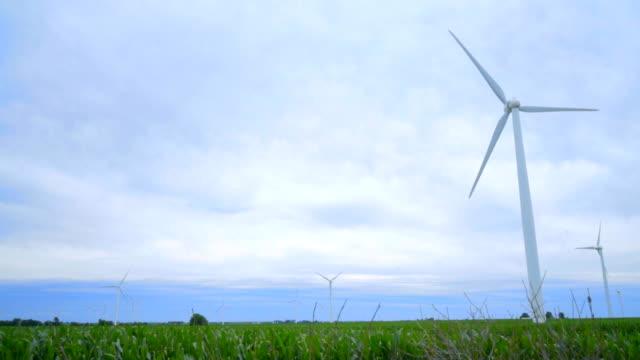 Wind power concept. Wind turbines field. Dolly shot of wind turbines video