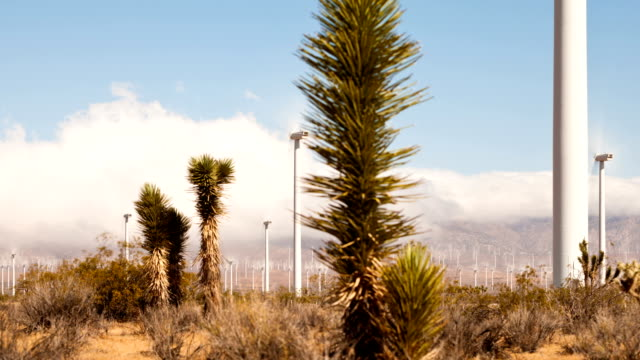 Wind Power In California video