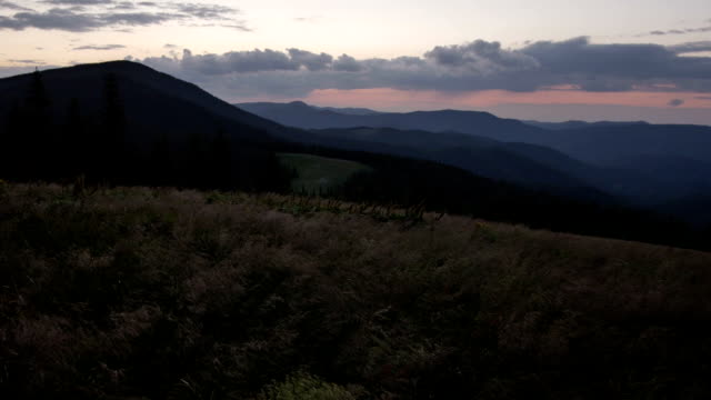 wind shakes the grass in the mountains after sunset video