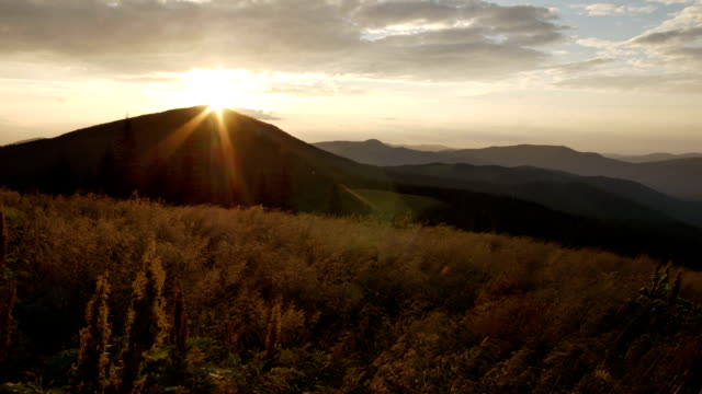 wind shakes the grass in the mountains during a sunset. smooth movement up and down video