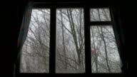 wind shakes the trees and snow falling in wooded area seen through window video