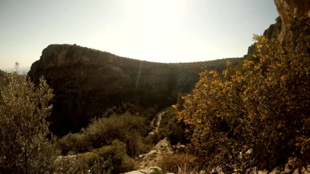 Wind swaies branches of tree in front of camera on background Gorge Seytanderesi Adamkayalar Mersin province Turkey video