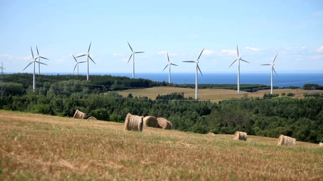 Wind Turbine and field video