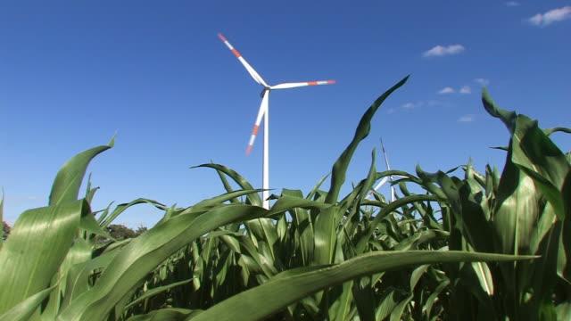Wind Turbine. Clean Energy video