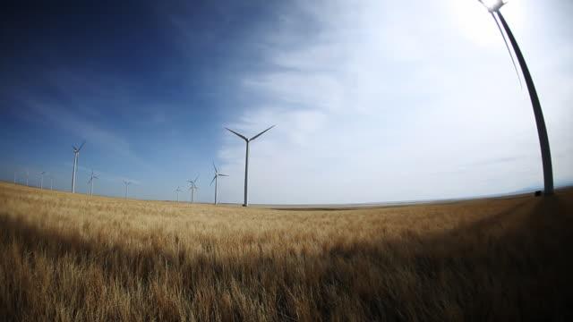 Wind Turbine Farm. Renewable Energy. video
