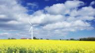 Wind turbine in yellow field video
