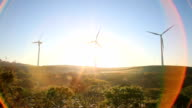 Wind turbines farm by sunrise video