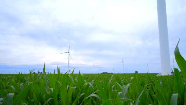 Wind turbines field. Panning on wind turbines standing in farm field video
