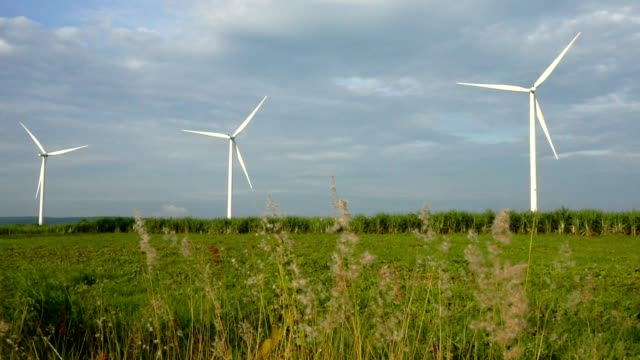 Wind turbines generating electricity. energy conservation concept. slow motion. video