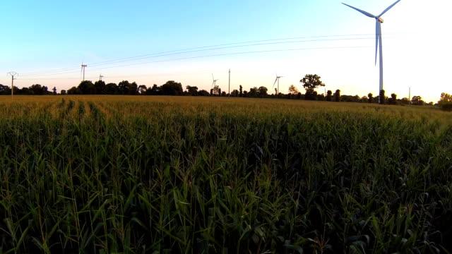 Wind Turbines In Farmland video