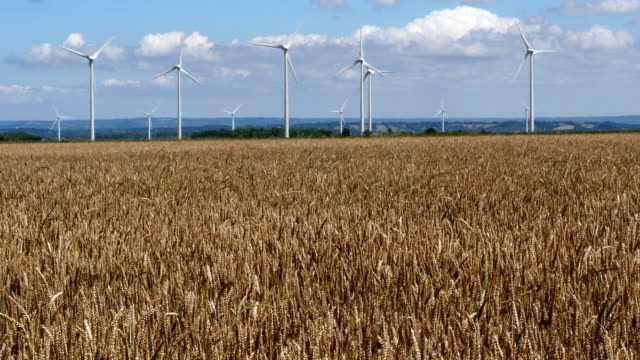 Wind Turbines with Blue Sky, near Caen in Normandy, Real Time 4K video