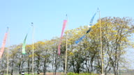 Wind with Prayer flags or Tung Flag of Lanna at northern of Thailand video