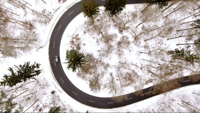 Winding road through a winter forest video
