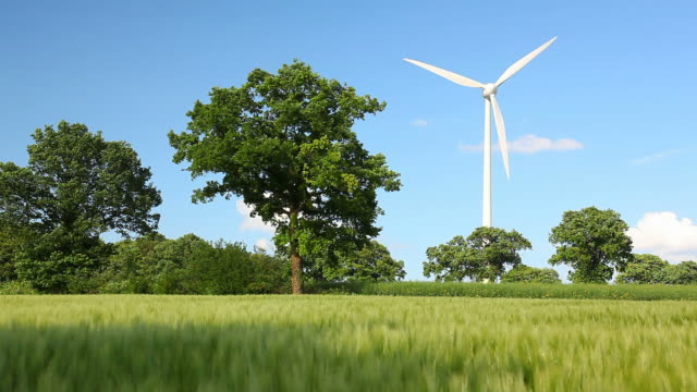windmill in nature video