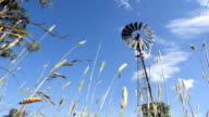 Windmill in the country in Australia video