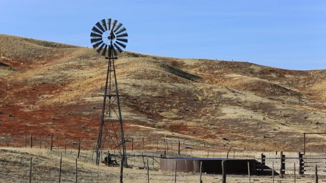 Windmill video