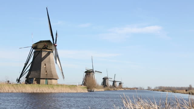 Windmills in Kinderdijk video