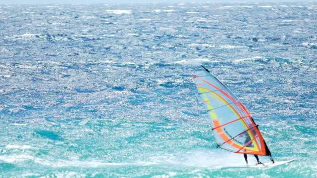 Windsurfing competition, skilled athlete enjoying speed sailing, extreme sport video