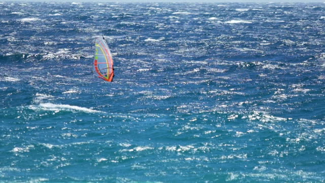 Windsurfing, skilled person showing great performance on waves, active life video