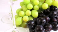 Wine and grapes video