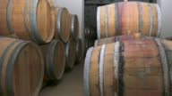 Wine barrels in french winery video