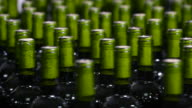 Wine bottle filling along a conveyor belt in a wine bottling factory video