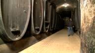 wine cellar video