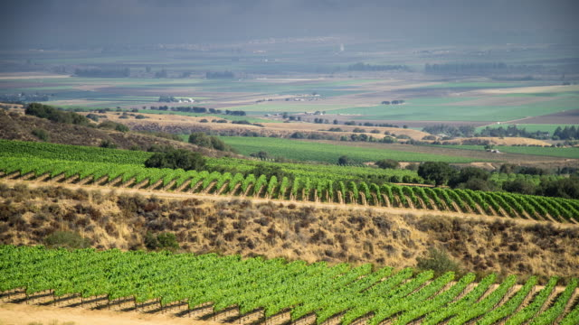 Wine Country Scenics - Time Lapse video