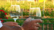 Wine Glasses video