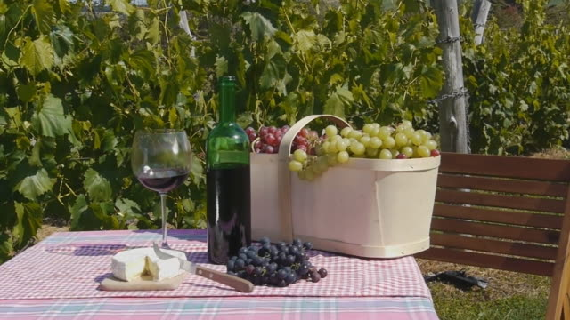 Wine Grape and Cheese video
