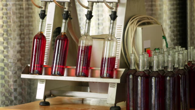 Wine production factory, filling bottle process video