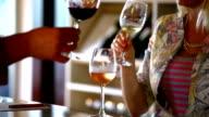Wine tasting event. video
