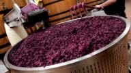 Winemaking and running off of a tank video