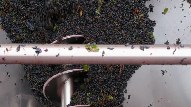Winemaking video
