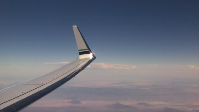 Wing video
