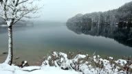 Winter Alpsee lake misty view. video